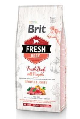 Brit Fresh Dog Beef & Pumpkin Puppy Large 2x12kg